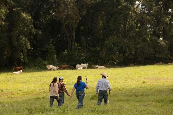 Rural Health AOC